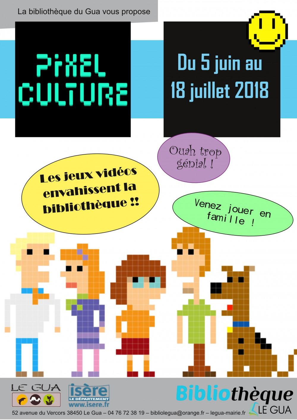 PIxel culture